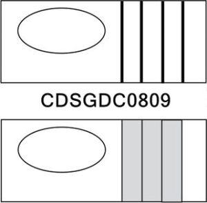 CDSGDC0809 sketch